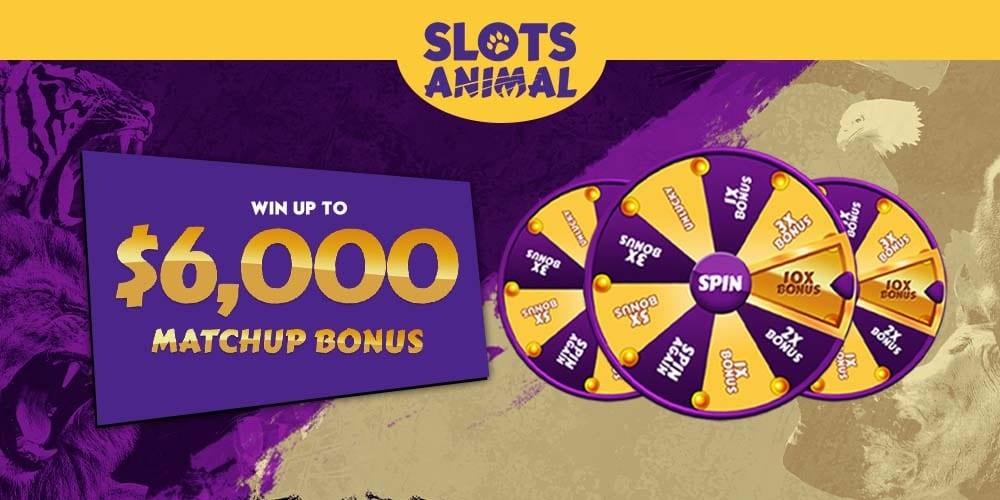 Slots Animal Banner