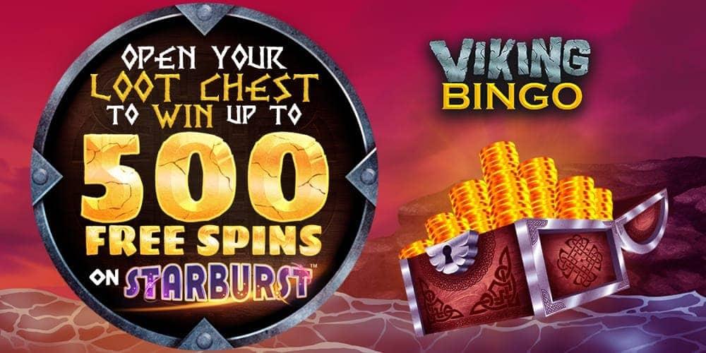 Viking Bingo Banner